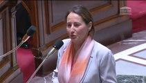 S. Royal répond à une QAG de J. Launay au sujet de la Préparation de la Conférence climat à Paris