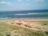 la plage sauvage à 1 km à vol d'oiseau de la résidence Odalys Messanges