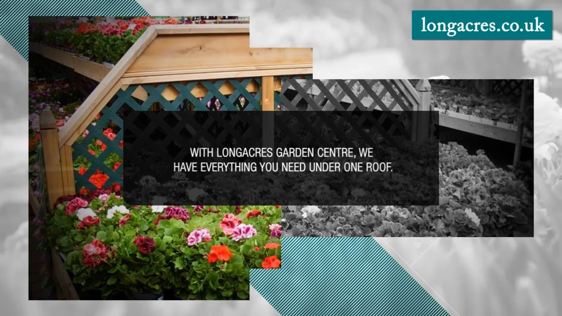 Build and Maintain a Beautiful Garden with Longacres Garden Centre
