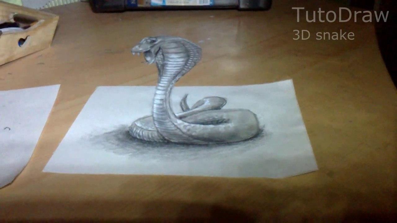 Dessin D Illusion D Un Cobra En 3d Time Lapse