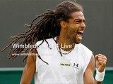 LIVE Wimbledon 2014 Womens Singles FINAL TENNIS