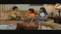 Shab-e-Zindagi Episode 23  on Hum Tv 1st July 2014 - part 3