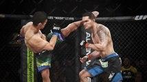 EA Sports UFC Simulations - UFC 175 Predictions