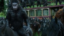 "Dawn of the Planet of the Apes - Extrait ""Apes Don't Want War"" [VO