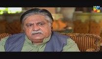 Shab-e-Zindagi Full Episode 23 on Hum Tv 1st July 2014