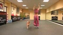 So cute dog dancing - Crazy animal choregraphy!