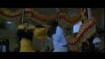 Dale Vander Woude - Jackie Chan Famous Ladder Fight Scene