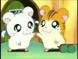 Hamtaro hamster Dance