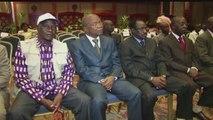 AFRICA NEWS ROOM du 01/07/14 - Afrique - LES LIBANAIS D'AFRIQUE : Le Chawarma fait le succès de la cuisine Libanaise en Afrique - partie 3