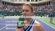 Online Semifinal Womens L. Safarova vs P. Kvitova tennis