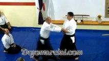 Shiho nage - Yoshiaki Yokota Shihan, 7Dan Aikido - Jefe de Instructores de Aikikai Japón - Chief Instructor of Aikikai Japa