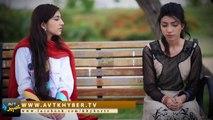 Episode #15   Za Pakhtoon Yum   AVT Khyber   First HD Pashto Action Drama
