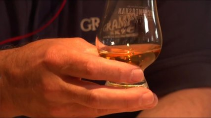 Whisky U - What glass should you use when tasting whisky?