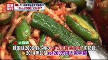 14 07 08 AX MYNY 中韓 キムチ問題 韓国産キムチ 衛生基準に問題 キムチ貿易摩擦
