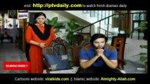 Koi Nahin Apna Episode 14 on ARY Digital - 9th July 2014 - part 3