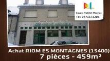A vendre - Immeuble - RIOM ES MONTAGNES (15400) - 7 pièces - 459m²
