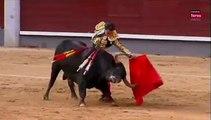 Iván Fandiño en Madrid gran faena y cornada 2013