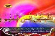 Surah Ar Rahman Talawat by Qari Syed Sadaqat Ali