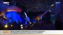 Showbiz: Exposition à Paris: un voyage grandeur nature au monde des dinosaures - 12/07