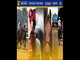 expert sports betting picks  horse race betting
