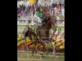 delaware park sports betting hours  horse race betting