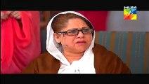 Dhol Bajne Laga Episode 15  HUM TV Drama - 14th July 2014