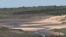 Saint-Brevin-les-pins : les dunes rempart naturel contre les vagues de submersion