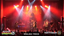 WAILING TREES @ Reggae Contest Europe 2014
