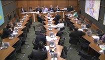 03.06.2014 - Commission du développement durable : MM Marc Blanc et Allain Bougrain Dubourg, rapporteurs au CESE