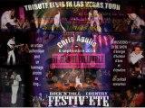 CONCERTS - Galas - Festivals - soirées 2014