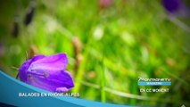 Savoie - Balades en Rhône Alpes - Bande Annonce - 2014