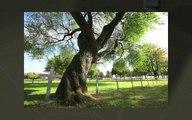 Tourisme-de-mmoire-NORD-PAS-DE-CALAIS---YouTube
