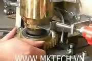 Máy viên thịt, máy làm bò viên, cá viên tự động, máy tạo viên thịt viên cá tự động YR 010, LH 0909134877