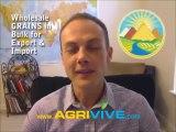 Buy Bulk Grain, Grain Exporting, Grain Exporters, Grain Exporter, Grain Exports, Grain Export