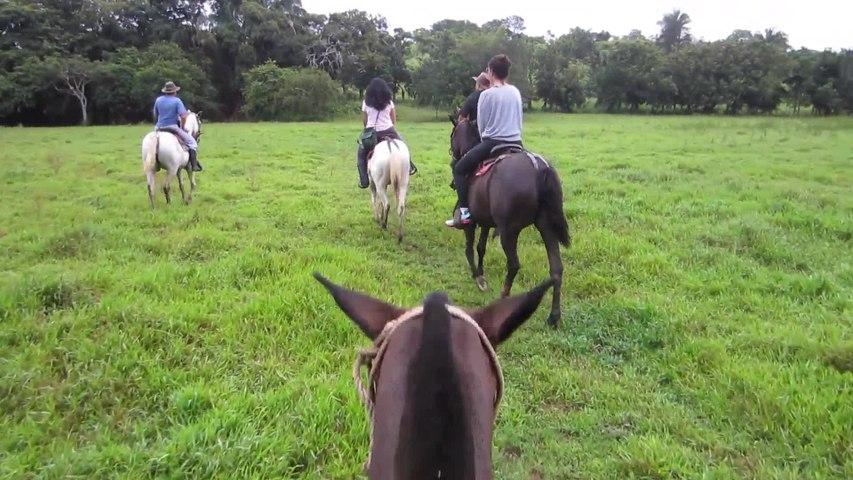 Costa Rica Horseback Tour