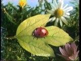 Arte 22 Septembre 2005 2 Bandes-annonces