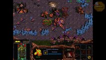 Starcraft Walkthrough FR Campagne Zerg - Mission 10 - La boucle est bouclée