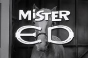 Mr. Ed - Intro (Opening Theme)
