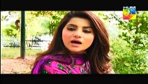 Dhol Bajne Laga Episode 28 HUM TV Drama - 27th july 2014