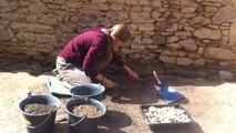 Des fouilles archéologiques au château de Suscinio