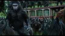 La Planète des Singes : L'Affrontement - Extrait 'Les singes ne veulent pas la guerre' [VOST|HD1080p]