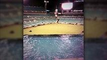 Une piscine dans le stade des Jaguars de Jacksonville