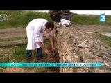 """Recette """"le Ragoût d'agneau"""" - Recette du jeudi 23 Mai 2013"""