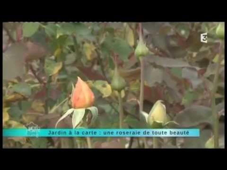 Les plus beaux jardins - Une roserie de toute beauté - Le Grand-Quevilly  (76) - 23 septembre 2013