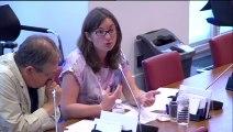 Audition de M. Yves Struillou, dg de la DGT (ministère du travail, de l'emploi et du dialogue social) - Mercredi 30 Juillet 2014