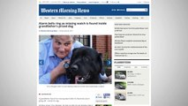 Man Learns Dog Swallowed Expensive Watch When Alarm Goes Off In His Stomach