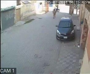 CCTV Footage of Man Stealing Car's Mirror