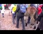 Reportage sur le marché du cheval dans Skaryszew - 2012