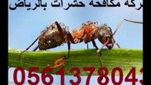 شركة مكافحة حشرات في الدلم  0541863669رش مبيدات بالدلم والهياثم الخرج مكافحة الصراصير الثعابين البرص البق النامز رش دفان