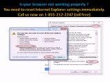 Internet Explorer Tech Support Number | Instant Resolution | Shortest Wait